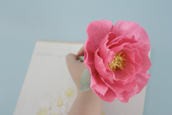 pink pen_02